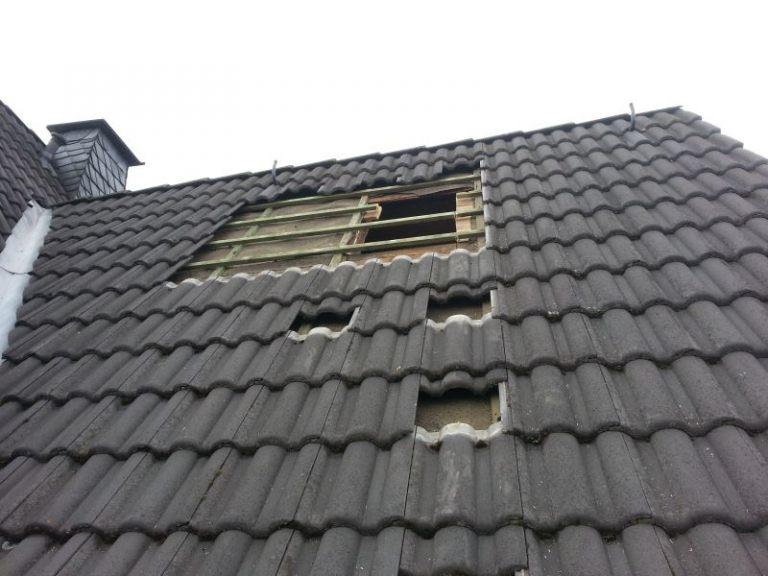Dachdeckerstrauss01