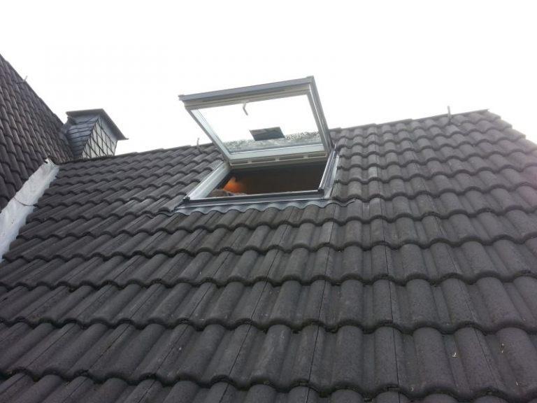 Dachdeckerstrauss02